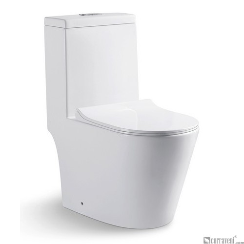 RS211 ceramic washdown one-piece toilet