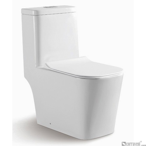 RS111 ceramic washdown one-piece toilet