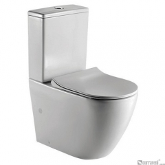 ME521 ceramic washdown two-piece toilet